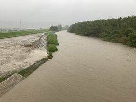 増水し泥水で濁った嘉瀬川=佐賀市大和町