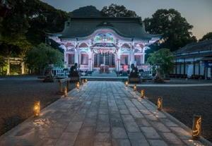 週末にライトアップされる武雄神社の神殿。近くにある大楠もライトアップされている。