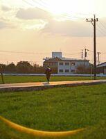 陸自ヘリ墜落から5日で2年。たそがれに染まる事故現場周辺の麦畑。日常の風景が戻っている=4日午後、神埼市千代田町嘉納