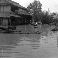 民家の1階屋根に流れてきた草が残り、その高さまで浸水したとみられる