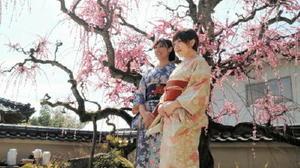 梅で有名な町内の民家で、着物を着て写真撮影する参加者たち=基山町