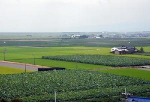 北有明カントリーから望む北明地区。地平線まで広がる農地には、水稲やレンコン、大豆と多種多様な作物が作付けされている=杵島郡白石町
