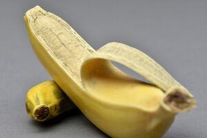 「牙彫バナナ棚飾」(明治時代後期、鍋島報效会所蔵)