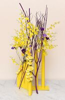今週の花「しあわせを運ぶ色」