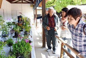 20日に始まった「はがくれ山草会」の春の山野草展=佐賀市の佐嘉神社