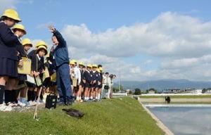 整備後のクリークを見学し、地域の人の力で環境が守られていることを学ぶ西郷小の児童たち=神埼市