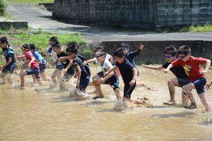 30メートル走で勢いよく田んぼを駆ける児童たち=有田町の曲川小の学校田