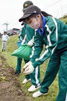 休耕田を利用した畑に肥料をまく牛津高の生徒たち=小城市小城町