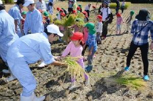 ふたばこども園の子どもたちに刈った稲穂を優しく手渡す佐賀農業高生ら=白石町の佐賀農業高校