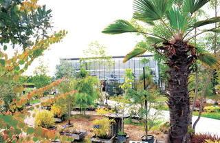 九州ぷちトリップ MAP4 SANTA ANA garden(サンタ アナ ガーデン)