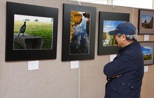 受講生の撮影した写真を見つめる来場者=吉野ケ里歴史公園