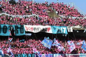 鳥栖―横浜M サガンピンクの記念ユニホームを着て応援する鳥栖サポーター=鳥栖市のベストアメニティスタジアム