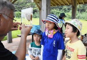 人工磯で採集したエビや海藻を小さな水槽で観察する子どもたち。左は玄海地区海藻研究会会長の飯田勇次さん=唐津市呼子町の小友海岸