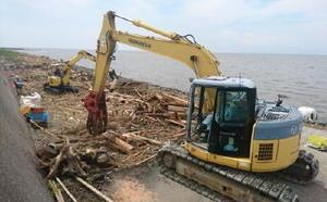 有明海の海岸で始まった流木などの撤去作業=14日午前、佐賀市