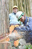 演習林で伐採の指導をする伊万里農林高の松本寛教諭(手前)=伊万里市の腰岳