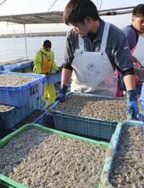 瀬戸内海「栄養不足で不漁」