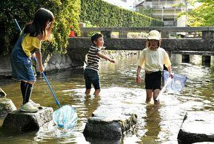 佐賀県内で今年初の真夏日 佐賀市…