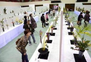 2014年の佐賀県諸流合同いけばな展の様子=佐賀市の市村記念体育館