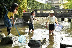 今年初の真夏日を記録する暑さとなり、川遊びを楽しむ子どもたち=佐賀市松原(撮影・山口源貴)
