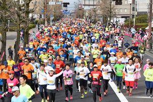 春の日差しを浴びながら、佐賀市中心街を駆け抜けるランナー=佐賀県庁前の貫通道路