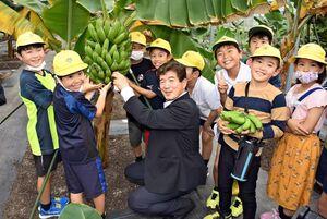 末安伸之町長(中央)と一緒にバナナを収穫する子どもたち=神バナナみやき農場