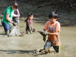 ため池の池干しに合わせて、子どもたちがコイを捕まえた鯉りんピック=有田町仏ノ原