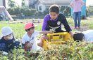 児童と芋掘りで交流