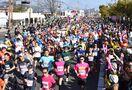 【速報】<新型コロナ>「さが桜マラソン2020」中止