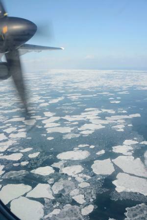 流氷、網走北80キロに到達