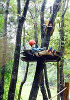 マスクと手袋を着用し、ワイヤを伝って木々の間を進む利用者=神埼郡吉野ヶ里町三津の「アドベンチャーバレーSAGA」
