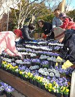 光の文字が入る花壇に花苗を植える参加者=佐賀市駅前中央の駅前まちかど広場