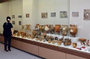 2014、15年度に小城市内で発掘された出土品を見る来場者=小城市立歴史資料館