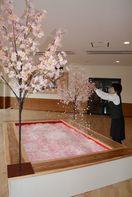 """""""桜のプール""""で新酒を 宗政酒造で蔵開き 23、24日 …"""