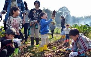 土の中から芋を掘り起こし、収穫を喜ぶ子どもたち=基山町園部