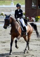 馬術成年女子自由演技馬場馬術 人馬一体となり、華麗なステップを踏む古賀千尋とアンパイア=岩手県の水沢競馬場