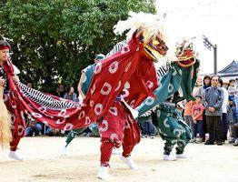 激しく乱舞する崎村地区の獅子舞=神埼市千代田の冠者神社