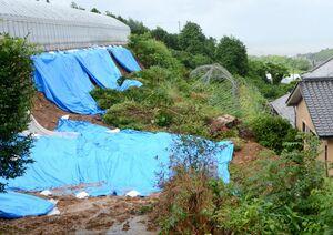 土砂崩れで被害を受けた花き栽培のハウス。土砂は住宅内にも流入した=藤津郡太良町伊福