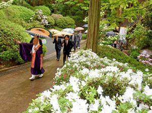 咲き始めたツツジを楽しみながら園内を散策する出席者=基山町の大興善寺