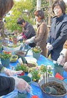 秋の草花を使った寄せ植えを体験する来場者ら=佐賀市松原の肥前通仙亭