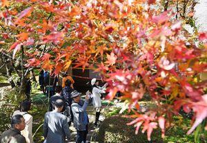 紅葉した木々と風情ある邸宅が美しい景観を描き出す九年庵=15日午前、神埼市神埼町
