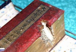 米軍機の機銃弾が貫通した経典=鳥栖市藤木町の長福寺所蔵