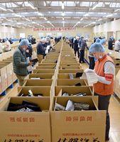 出品された冷凍網ノリの品質をチェックする業者=佐賀市の佐賀海苔共販センター
