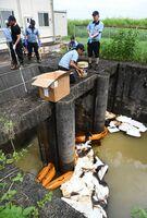 川に浮いた重油を取り除く佐賀鉄工所の従業員ら=杵島郡大町町福母