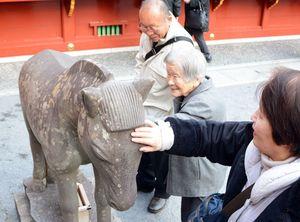 健康を祈り、境内の石馬を触る参拝客=鹿島市の祐徳稲荷神社