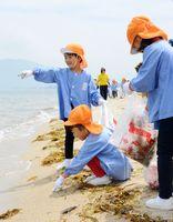 砂浜を清掃する園児たち=唐津市の東の浜海水浴場