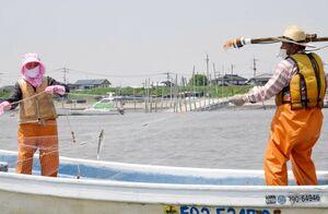 伝統的な漁法「流し刺し網」でエツを取る漁師=福岡県大川市の筑後川