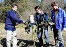 徐福長寿館でビワの苗木植樹 納所里づくり委員会