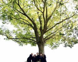 ◆準特選「大きな楠の木の下で」大熊なるこ(唐津東2年)
