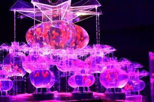 独創的なデザインの水槽を金魚が泳ぐ「アートアクアリウム」=福岡市博多区のJR九州ホール