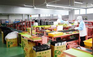 イチゴを容器に入れるベトナムからの技能実習生。さまざまな包装の仕方を学んでいる=唐津市原の唐津地区いちごパッケージセンター